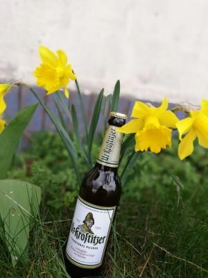 Mit den ersten Frühlingsboten den Frühling einläuten und die erste Wärme genießen. Erste Frühlingsboten läuten die Genießersaison ein. Im Garten im schönen Sachsen-Anhalt. - Melanie