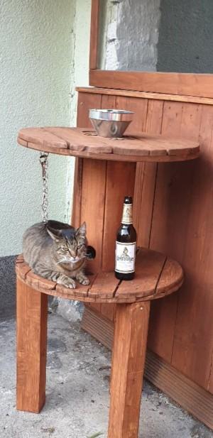 Ein Bier für alle. Schmeckt jedem. Groitzsch. - Sven