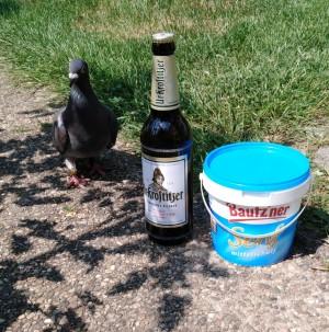 Unser neuer Mitbewohner findet Euer leckeres Bier und den Bautzener Senf echt klasse. In dem Eimer sind seine Körner. :-) Echte Liebe zum Tier. Zuhause. - Anett
