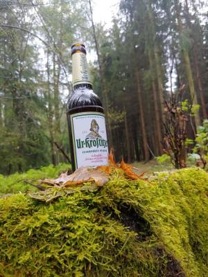 Eine seltene Art des gemeinen Flaschenpils im Wald entdeckt ;). Vatertag 2021. Hardtwald in Mosel bei Zwickau. - Chris